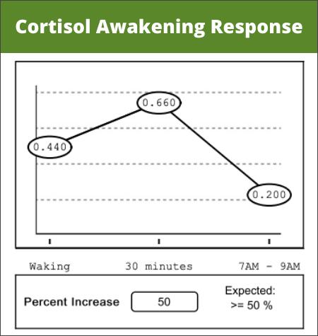 Normal Cortisol Awakening Response