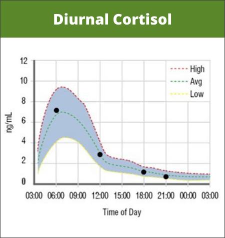 Normal Diurnal Cortisol Levels